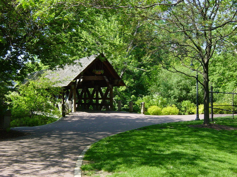 Top 3 Scenic Dog Walking Routes In Naperville The Out U