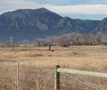 Dog walking routes in Boulder at Dry Creek