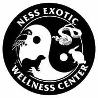 Best Vets in Naperville - Ness Exotic