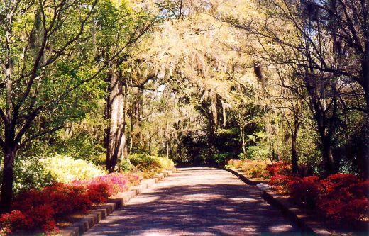 Alfred B. Maclay Gardens Trail