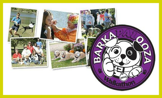 west suburban humane society barkapalooza downers grove pet care