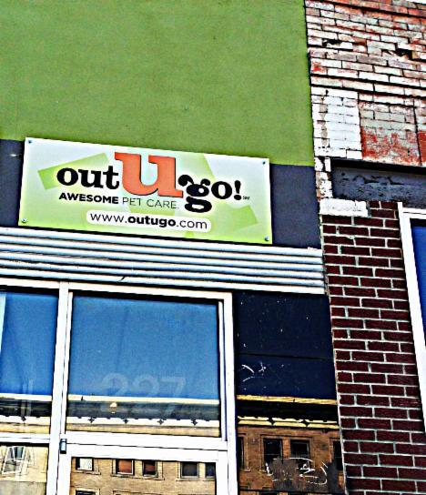 oug-denver-pet-care-services-new-office-3