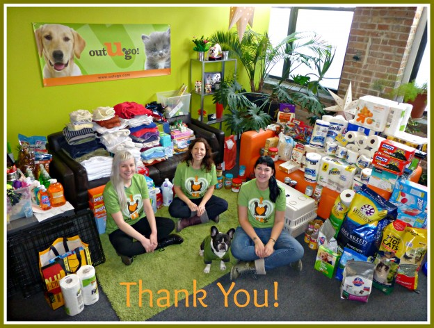 Chicago_Oak-Park_Hands-to-Paws-Holiday-Donation-Drive