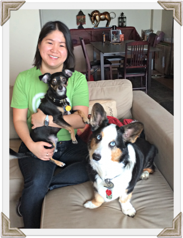Downers Grove pet sitter Lille