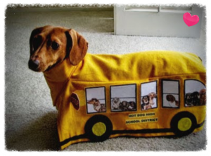 doggy-school-bus-costume
