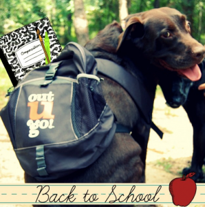 back2school-august-2016-newsletter