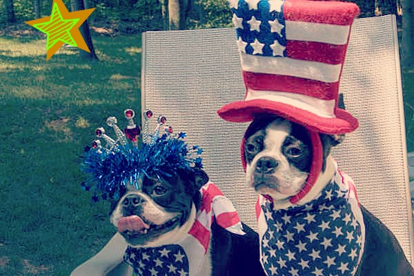 Schedule your Memorial Day Dog Walks