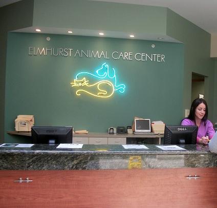 Best Vets in Downers Grove - Elmhurst Animal Care Center