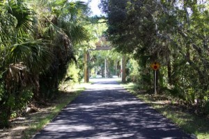 Best Dog Walks: Tallahassee-St. Marks Historic Railroad State Trail
