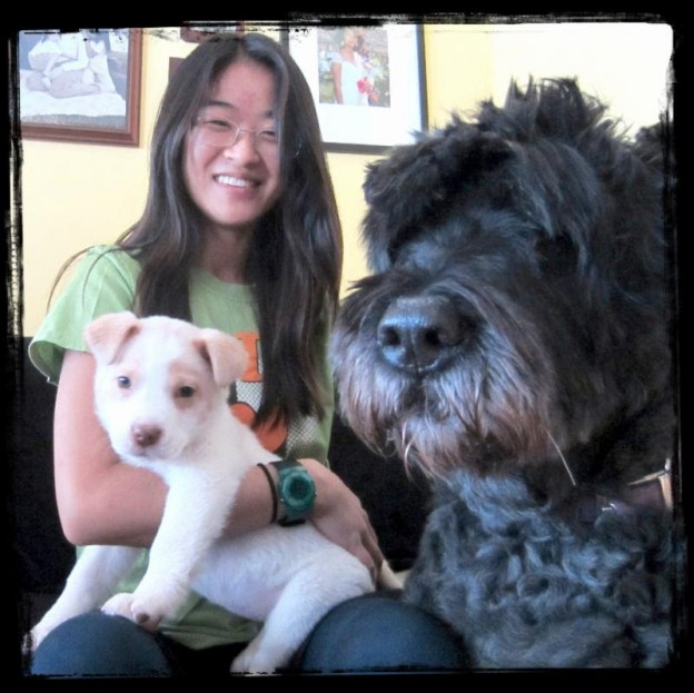 Oak Park pet sitter Ciara with her dog and puppy!