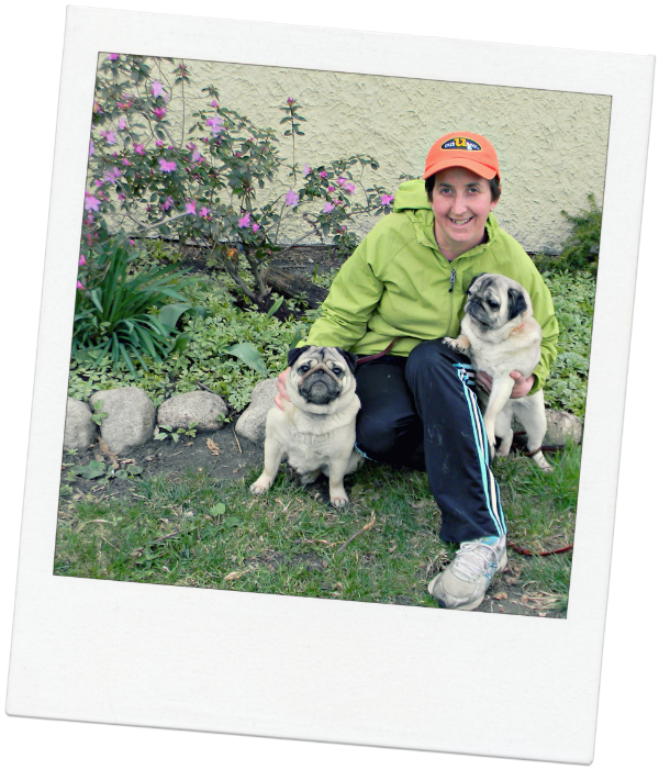 Oak Park Pet Sitter Gretchen and her pugs
