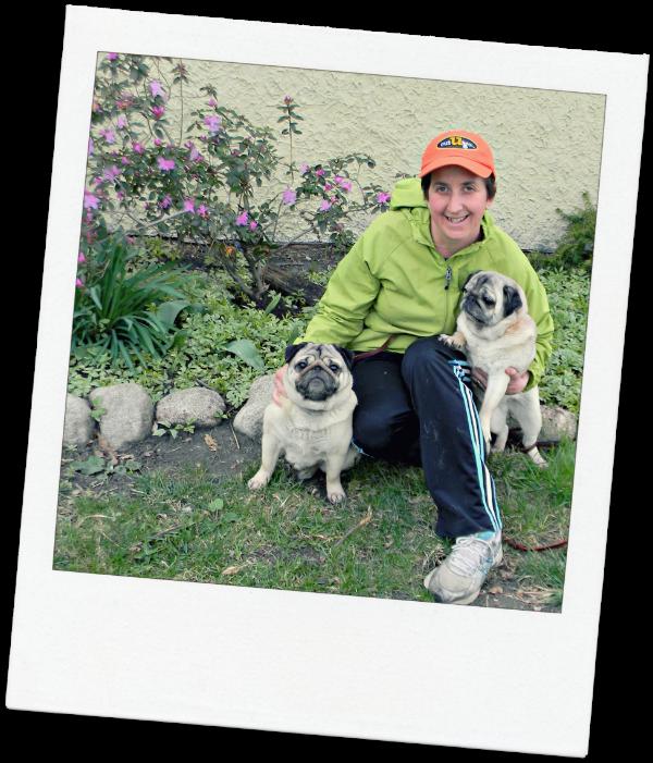 Oak Park Pet Sitter Gretchen and her pugs